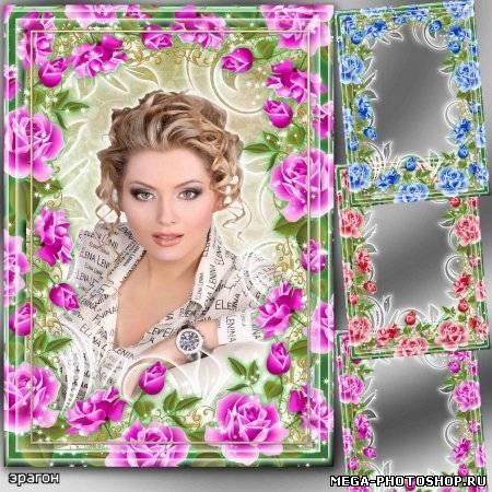 Цветочные рамки для фото – розы